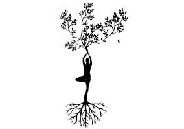 Yoga Zitate Sprüche Und Weisheiten