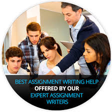 custom assignment help by premium assignment writing service top assignment help