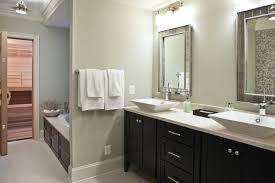 Gorgeous Gray Cabinet Paint ColorsBathroom Cabinet Colors