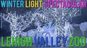 Lv Zoo Lights Winter Light Spectacular At Lehigh Valley Zoo