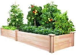 cedar wood 2 ft x 8 ft outdoor raised