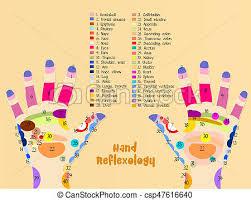 Hand Chart Hand Reflexology Chart