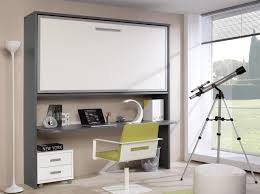 concealed space saving murphy bed