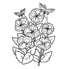 Leuk Voor Kids Bloemen Met Vlinders