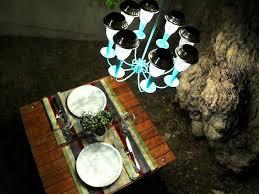 romantic solar lit picnic