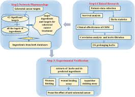 Molecular Targets Of Chinese Herbs A Clinical Study Of