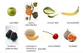 Tên 24 loại quả trong tiếng Anh - VnExpress