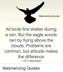 Birds Quotes Mesmerizing Quotes All Birds Find Shelter During a Rain but the 81