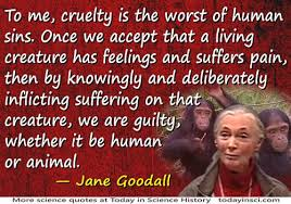 Jane Goodall Quotes Delectable Jane Goodall Quote Cruelty Is The Worst Of Human Sins Medium Image