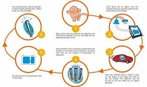 All About Umbilical Cord Blood Stem Cell Banking Procedure