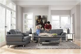 Living Room With Grey Sofa Furniture Dark Grey Sofa Decorating Ideas Awesome Glass Wall