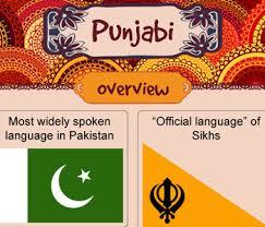 Punjabi Language Infographic On Punjabi Language