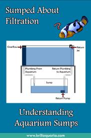 Freshwater Aquarium Sump Plumbing Design Confused By Aquarium Sump Filtration Read Our Article To