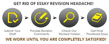 revise my essay professional essay revision service  view larger professional essay revision service