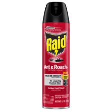 Raid Ant & Roach Killer Spray Outdoor Fresh - CVS Pharmacy