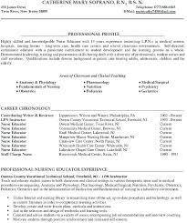 Sample Resume For Adjunct Professor Position Amazing Sample Community College Instructor Resume Adjunct Professor Example