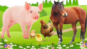 Dạy các con vật cho thiếu nhi vui nhộn hay nhất  Dạy bé học online - YouTube