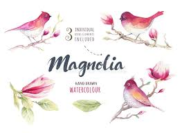 watercolor painting magnolia blossom flower and bird wallpaper d stock image image of tree