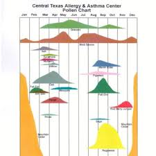 Austin Allergy Season Chart Pollen Chart Yelp