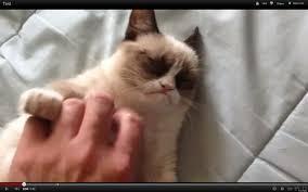 grumpy cat good smile. Plain Good Throughout Grumpy Cat Good Smile
