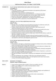 resume for human resources manager plant human resources manager resume samples velvet jobs