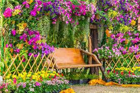 color garden. Color Garden P