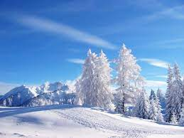 Snow Nature Wallpapers on WallpaperDog