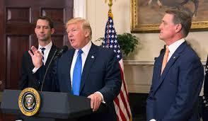daca s future can trump congress reach immigration reform deal daca s future can trump congress reach immigration reform deal national review