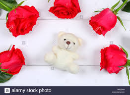 white teddy bears with hearts and roses. Interesting White White Teddy Bear Surrounded By Pink Roses On A White Wooden Table Template  For March To Teddy Bears With Hearts And Roses 4