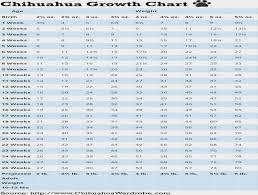 Cane Corso Growth Chart Cane Corso Size Chart Cypru Hamsaa Ivanpik Net
