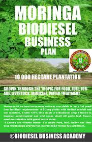 moringa biodiesel business plan moringabiodieselbusinessplan 10k