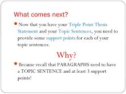 the essay roadmap 15