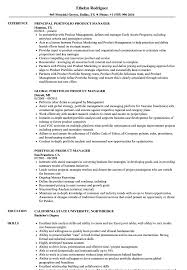 Job Application Portfolio Example Portfolio Product Manager Resume Samples Velvet Jobs