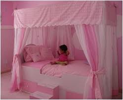 Princess Canopy toddler Bed Great Photos Princess Canopy Twin Bed ...