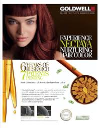 Professional Ammonia Free Hair Color Brands