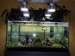 pr72 led planted tank pendants