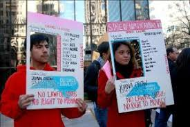 Drops North For - Licenses Idea Immigrants American Herald Of Tribune Pink-striped Carolina Latin