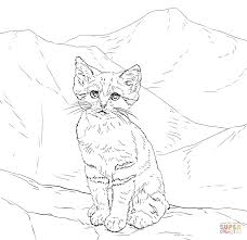 kittens clipart colouring picture 5