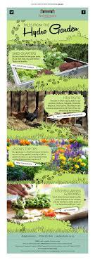 Kitchen Garden Hens Email Marketing Mightydigital