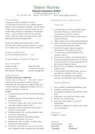 Resume Personal Statement Sample Resume Sample Web