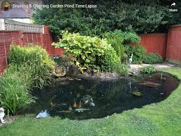 pro tips for opening your pond in the