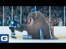 walrus goalie