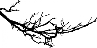 tree branch silhouette clipart