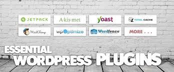 20 Best Wordpress Plugins 2019 Essential For Professional