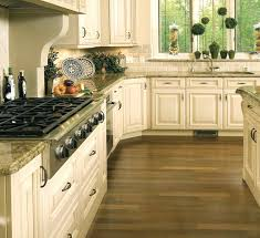 cleaning solution for kitchen cabinets types compulsory cabinet cleaning solution best kitchen cabinets repainting way to