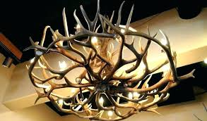 faux antler chandelier chandeliers for throughout elk faux antler chandelier white