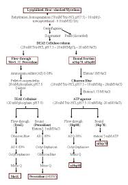 Protein Purification Chart A Procedure For Parallel Purification Of Four Stress Related