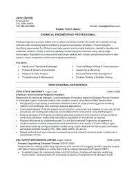 It Support Engineering Resume Professional Engineer Cv Template Word