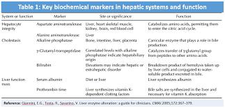Liver Enzymes Levels Chart Emdocs Net Emergency Medicine Educationelevated Liver