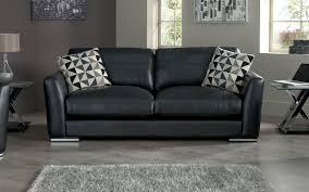 leather sofa care